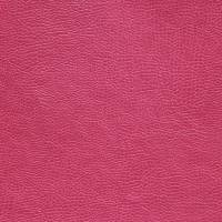 Buffalo Fabric - Fuchsia