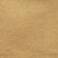 Buffalo Fabric - Gold