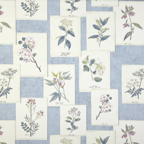 Prestigious Textiles Charterhouse Fabrics Journal Fabric - Chambray - 5756/765 - Image 1