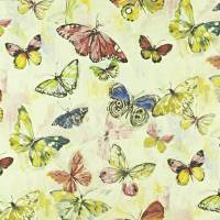 Butterfly Cloud Fabric - Hibiscus
