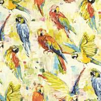 Macaw Fabric - Tropical