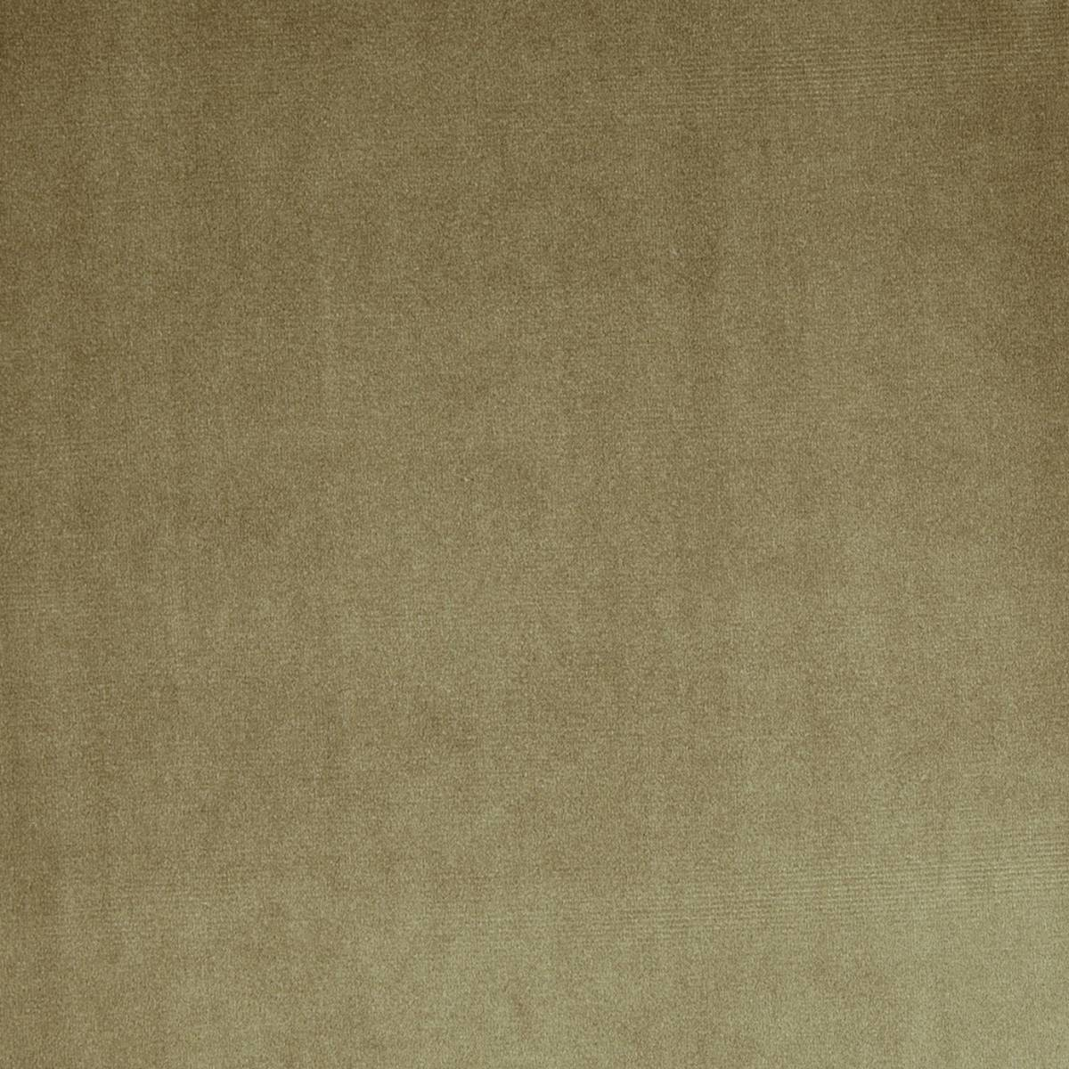 Velour fabric mink 7150 104 prestigious textiles for Velour fabric