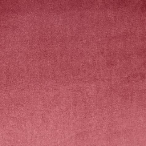 Velour Fabric Rosebud 7150 210 Prestigious Textiles