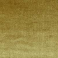 Velour Fabric - Gold