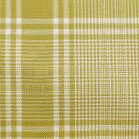 Steamer Fabric - Willow