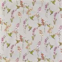 Humming Bird Fabric - Rose Quartz