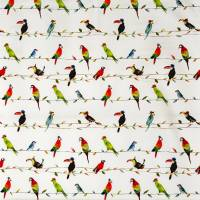 Toucan Talk Fabric - Paintbox