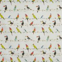 Toucan Talk Fabric - Tropical