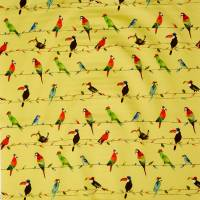 Toucan Talk Fabric - Zest