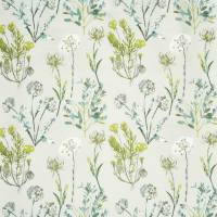 Allium Fabric - Fennel