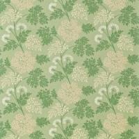 Cowparsley Fabric - Celadon