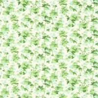 Hedera Fabric - Green