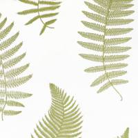 Fern Embroidery Fabric - Moss