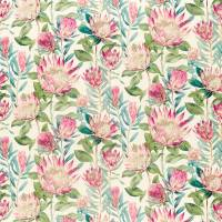 King Protea Fabric - Rhodera