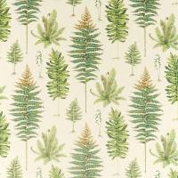 Fernery Fabric - Olive