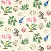 Capuchins Fabric - Chintz