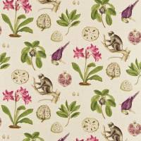 Capuchins Fabric - Boysenberry