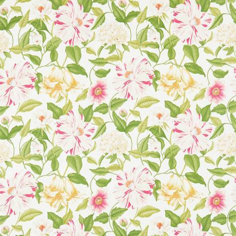 Sanderson Voyage of Discovery Fabrics Floreanna Fabric - Chintz - 223285