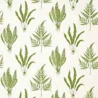 Woodland Ferns Fabric - Green