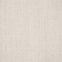 Plains One Plus 1 Fabric - Parchment