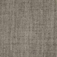 Plains One Plus 1 Fabric - Liquorice