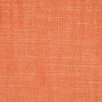 Plains One Plus 1 Fabric - Rust