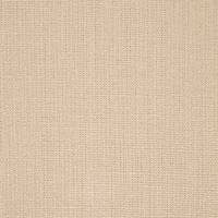 Plains One Plus 1 Fabric - Porcini