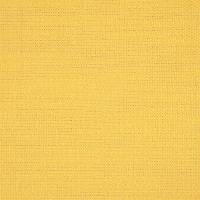Plains One Plus 1 Fabric - Sunshine