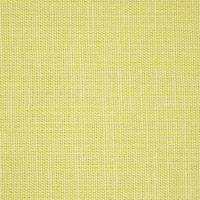 Plains One Plus 1 Fabric - Kiwi