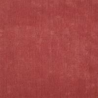 Curzon Fabric - Coral