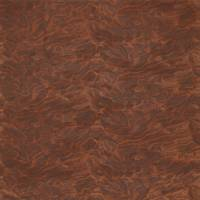Cirrus Embroidery Fabric - Copper