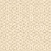 Lattice Fabric - 4