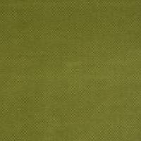 Heritage Fabric - Avocado