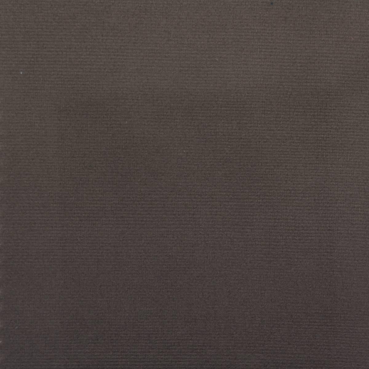 Plush Velvet Fabric Mole Plushvmole Warwick Plush