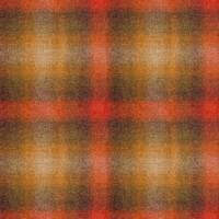Ombre Check Fabric - Japanese Maple