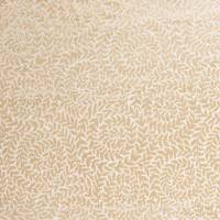 Sinuate Fabric - Champagne