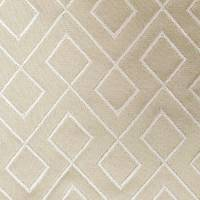 Kinver Fabric - Champagne