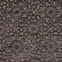 Merletto Fabric - Graphite