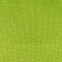 Turin Fabric - Lime