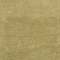 Velluto Fabric - Gold