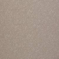 Shagreen Silk Fabric - Cassava