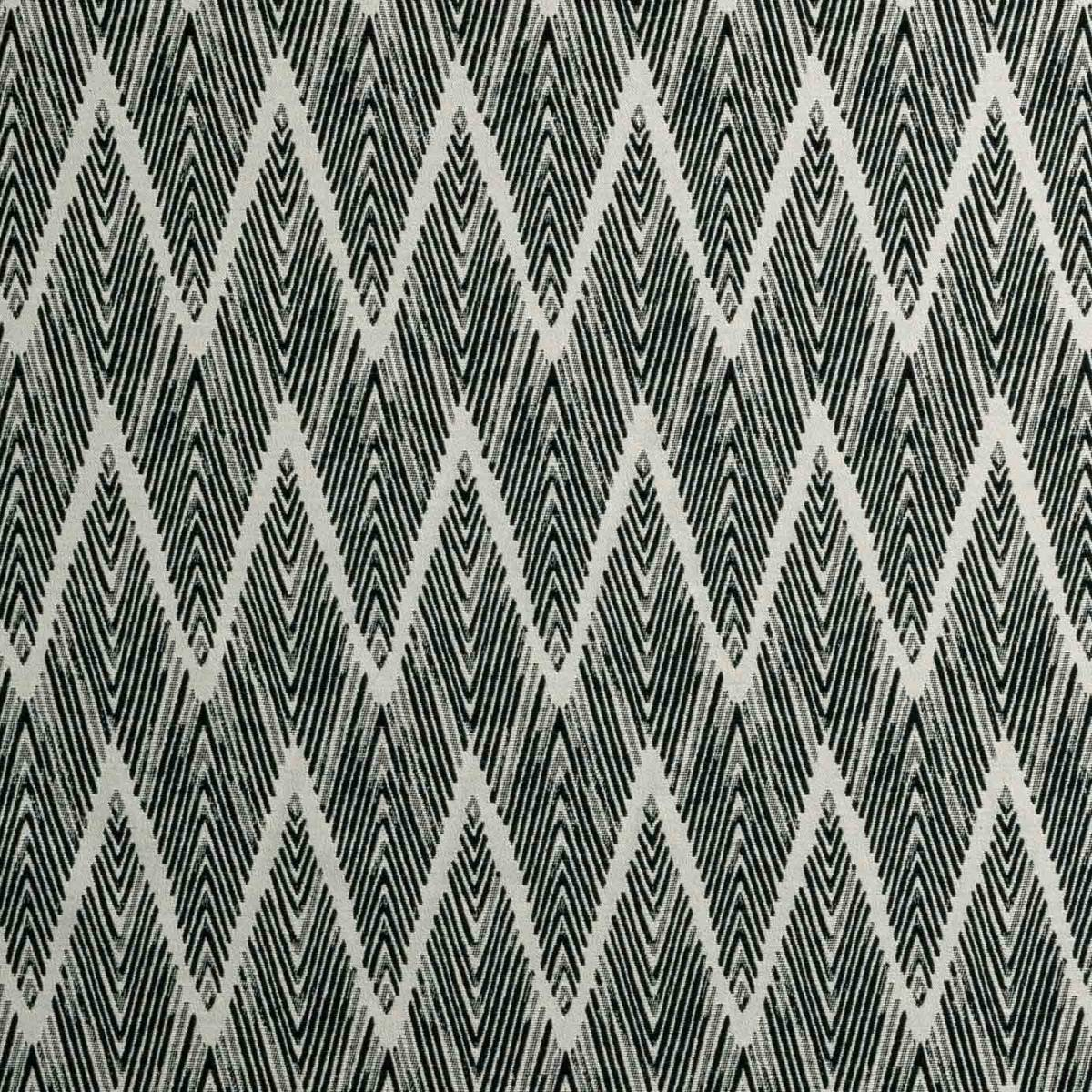 Curtains in bw1022 fabric black white f0895 01 for Black and white fabric