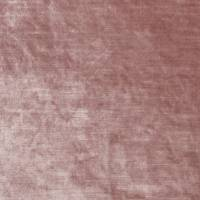 Allure Fabric - Blush