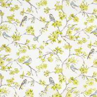 Birdies Fabric - Citrus
