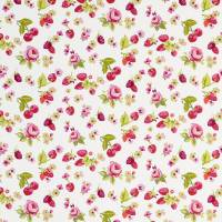 Summer Fruits Fabric - Raspberry