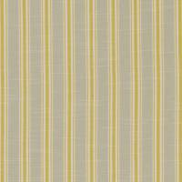 Thornwick Fabric - Citrus