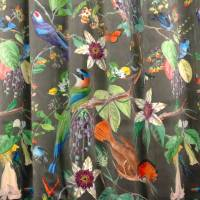 Exotic Bird Fabric - Multi