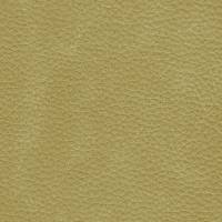 Laredo Fabric - Putty