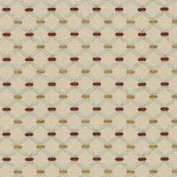 Agra Fabric - Ruby