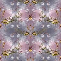 Wild Thistles Fabric - Blush/Flint